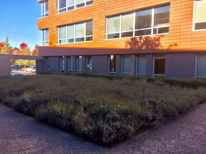 Bureaux à louer | Wasquehal (59290) Surface : 651 m2 Réf. 756545