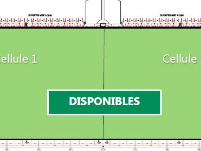 Entrepôts à louer | Seclin (59113) Surface : 17771 m2 Réf. 768189